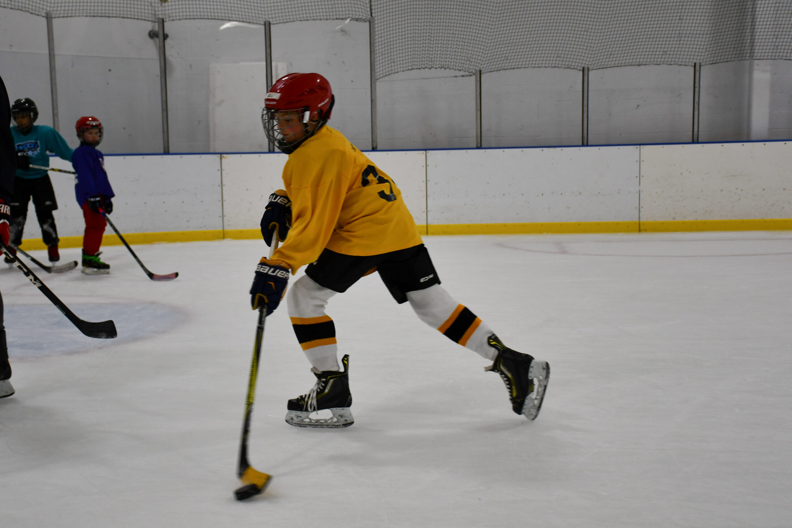 Willowbrook Ice Arena youth hockey player